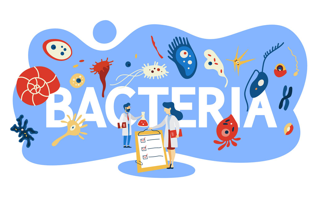 Полезные бактерии в йогурте
